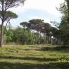 Ravenna. Nuovi giochi nei parchi di città, forese, lidi e pinete. Nelle aree gioco dei bambini.