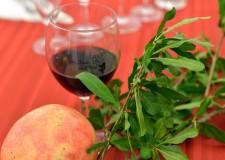 Alfonsine. Secondo weekend con la Festa dell'uva. Con tanto di musica, enogastronomia e spettacoli.