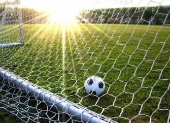 Ravenna. Impianti sportivi: approvati i contributi alle attività sportive per migliorare le strutture.