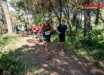 Milano Marittima. Oltre duemila di corsa fra spiaggia, pineta e centro storico. Per la 7ª 'Running In'.