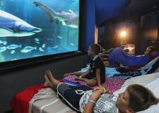 Cattolica/Riccione. All'Acquario e a Oltremare notti indimenticabili, dormendo tra squali e delfini.