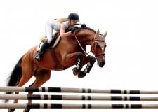 Forlì.Torna in Fiera l'eccellenza dell'equitazione nazionale. A 20 anni dalla 'Mostra del cavallo'.