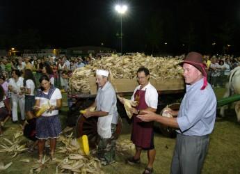 Bassa Romagna. Torna la 'Sfujareja', evento tra i più tradizionali e curiosi del territorio.