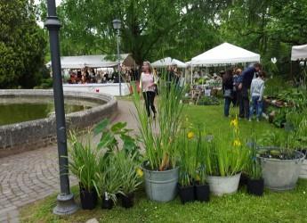 Ferrara. I ' Giardini estensi' in versione autunnale. Con mostra mercato di piante rare e insolite.