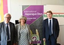 Cesena. 'Asparagus days': convegni, prove e visite tecniche. Oltre 80 gli espositori, la metà esteri.