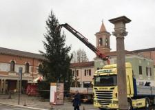 Cesenatico. Giunge dal Trentino 'l'abete ferito dal maltempo' che illuminerà il Natale sul porto canale.