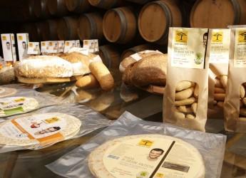 Rimini. Piadine e 'grissinotti' ai grani antichi. Farine recuperate e i prodotti della comunità 'San Patrignano'.