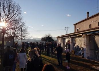 Rimini. Solidarietà per 'Bolle': tutto esaurito alla 'Festa della Befana' del canile comunale 'Cerni'.
