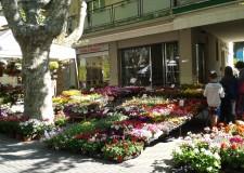 Bellaria Igea Marina. Mercatini di Primavera: sabato mattina, apertura con l' artigianato artistico.