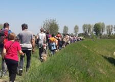 Bassa Romagna. Racconti in viaggio: passeggiata lungo il  fiume Lamone, sulle tracce della storia.