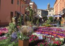 Santarcangelo d/R. Piante, fiori, artigianato e  benessere, per la  31esima edizione di 'Balconi fioriti'.
