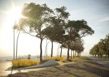Rimini. Parco del mare: dopo l'estate  i lavori per il lungomare Tintori. Ok anche per il parco Fellini.