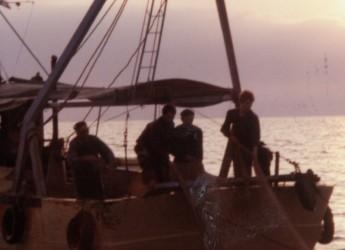 Rimini. Bando Feamp  2014-2020: riqualificazione dell'area portuale per le imprese del settore Pesca.