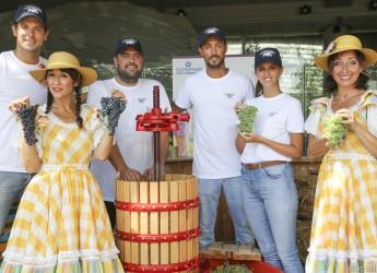 Riccione. E' nato il primo vino del parco Oltremare.Si replica giovedì 22 agosto con la Festa dell'uva.