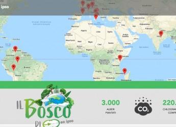 Milano. L'agenzia di comunicazione Eo Ipso crea un bosco globale. Obiettivo: aiutare il pianeta.