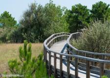 Ravenna. Il Festival del turismo responsabile. Per  riflettere insieme su sostenibilità, accoglienza e restanza.