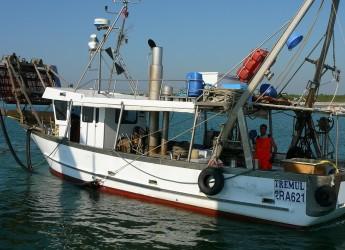 Emilia Romagna. Vongole, questione di millimetri. Senza la deroga dell'Ue colpite 120 famiglie di pescatori.