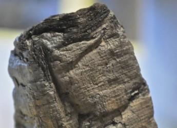 Napoli. Grazie ad una ricerca CNR tornano leggibili i rotoli della Villa dei papiri di Ercolano.