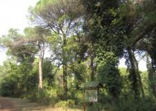 Emilia Romagna. Turismo. Nuovi servizi per le persone, più sicurezza e più attenzione all'ambiente.