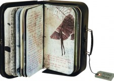 Ravenna. Ultimi giorni per la mostra 'Libri mai mai visti' e 'La biblioteca immaginaria di Rabelais'.