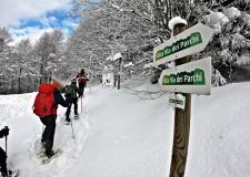 Emilia Romagna.  Scarsa neve sui nostri crinali ? Che cosa succede? Le risposte al corso: 'L'ultima neve'.