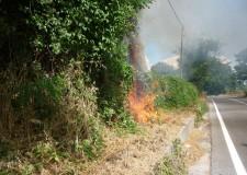 Cesena. Incendi boschivi, scatta lo stato di attenzione nel Cesenate e sull'intero territorio regionale.