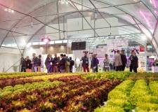 Cesena. A Macfrut 2020 'Innovation Square'. In Fiera il Villaggio dell'innovazione aperto alle startup.