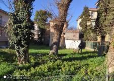 Rimini. Attività antidegrado: sgomberato il Villino Ricci e controlli anche al parco Alba Adriatica.