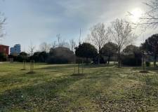 Bellaria Igea Marina. Quattordici nuovi alberi per il parco di 'Casa Panzini'.