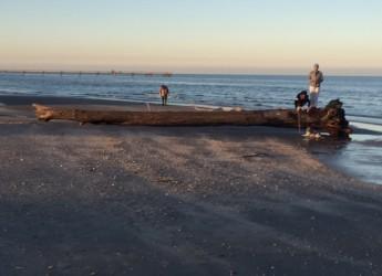 Rimini. Pulizia delle spiagge.Dai Comuni costieri della Provincia il via al ripristino delle nostre spiagge.