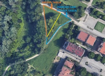 Forlì. Aree di sgambatura per cani. Sono in arrivo sette nuovi spazi in altrettanti quartieri del Forlivese.