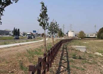 Santarcangelo d/R. Ciclabile sulla via Emilia, a buon punto il collegamento di Santa Giustina con il centro.