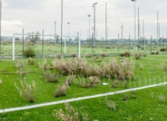 Rimini. Centro sportivo ex area Ghigi: nessuna offerta. L'assessore Brasini: 'Riformuleremo l'appalto'.