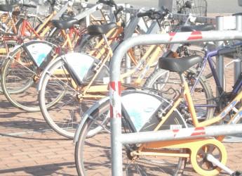 Forlì. Operazione 'decoro' bici abbandonate. I mezzi in disuso rimossi e dati in beneficienza.