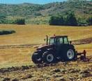 Roma. La ricetta di Cia per 'riprogettare il futuro' con l'agricoltura al centro.