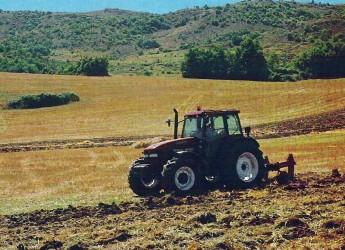 Roma. La ricetta di Cia per 'riprogettare il futuro' mettendo però  l'agricoltura al centro dei territori.