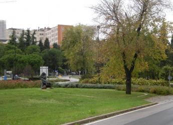 Ausl Romagna. Coronavirus, al 'Bufalini' attivati nuovi posti letto per emergenza Covid.