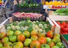 Ravenna. Coronavirus: da martedì 1 dicembre, mercati contadini di nuovo frequentabili nelle sedi consuete.