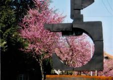 Cesena. La 'Ruota umana' di Amedeo Masacci restaurata e nuovamente collocata in luogo pubblico.