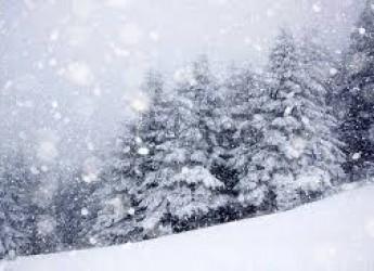 Emilia Romagna. Fazzini, geologo : 'Non sfidiamo la montagna innevata almeno per altre 36-48 ore'.