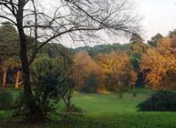 Forlì. Boschi urbani: al via i lavori per due lotti. Entro l'estate verranno piantumati 3.482 nuovi alberi.