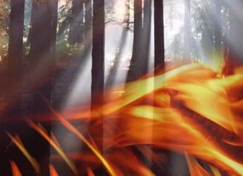 Unione Romagna Faentina. Attenzione per gli incendi boschivi. Come bruciare i residui vegetali.