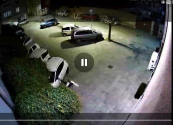 Savignano s/R. Videosorveglianza: identificati gli autori di atti vandalici in centro storico.