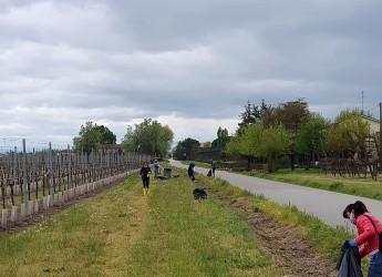 Lugo. Volontari della 'Consulta' e del 'Bizzuno' insieme per ripulire il fosso di via Tomba.