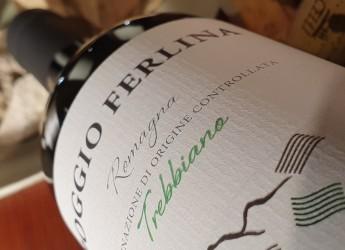 Emilia Romagna. Medaglie per i vini tipici. Dopo l'oro per Albana e Sangiovese due argenti per i vini bianchi.
