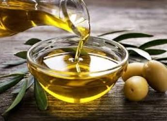 Roma. Unaprol e ITA  'Garibaldi': protocollo d'intesa. Per conoscere l'olio extra vergine d'oliva e le olive da tavola.