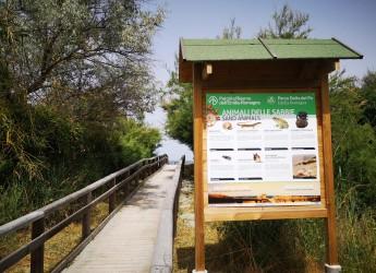 Ravenna. Pannelli info installati agli accessi delle spiagge libere. La biodiversità dei Lidi ravennati.