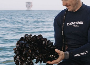 Marina di Ravenna. Dal mare alla tavola. Cozza protagonista del progetto dedicato ai molluschi.
