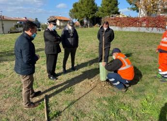 Misano Adriatico. Convenzione Comune – Autostrade per l'Italia per riforestare il territorio comunale.