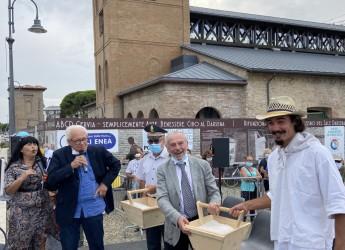 Ravennate. La 'Consegna del sale al Papa'. Così organizzato il tradizionale  viaggio a piedi da Cervia a Roma.